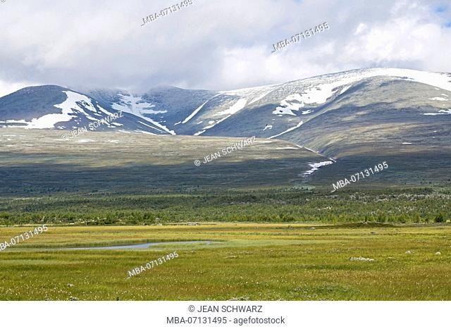 View over the flat plain up to the mountains Pårte in Sarek National Park, Sweden