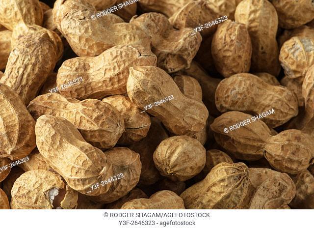 Peanuts spread,