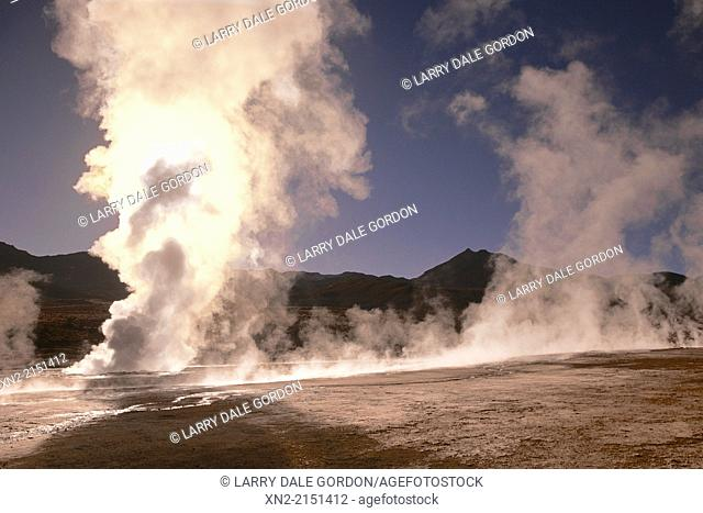 El Tatio Geyser Field sits at over 14, 000 feet elevation in the Andes Mountains near San Pedro de Atacama, El Loa Province, Antofagasta Region, Northern Chile