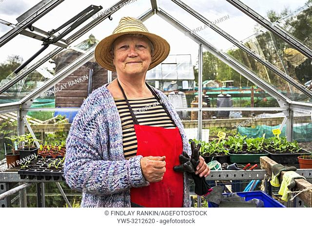 Image of Janette Hudson, plot 34, Eglinton Growers, Eglinton gardens, Kilwinning, Eglinton Growers Allotments, Kilwinning, Ayrshire, Scotland, UK