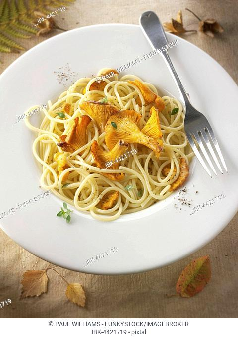 Wild organic chanterelle or girolle Mushrooms (Cantharellus cibarius), sauteed in butter and herbs with spaghetti