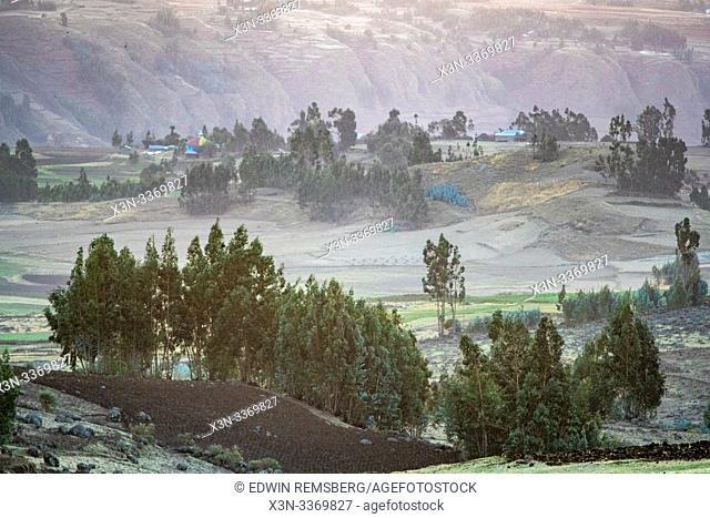 The rolling hillsides of Debre Berhan, Ethiopia