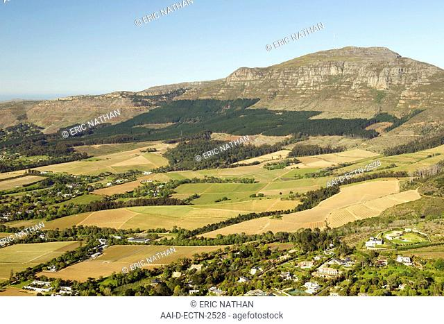 Aerial view of Constantia and Tokai vineyards on the slopes of Elephant's Eye mountain in Cape Town, South Africa