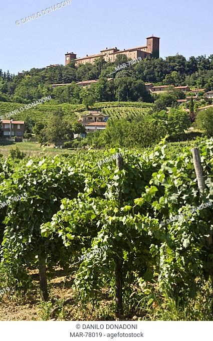 village and vineyards, montalto pavese, italy
