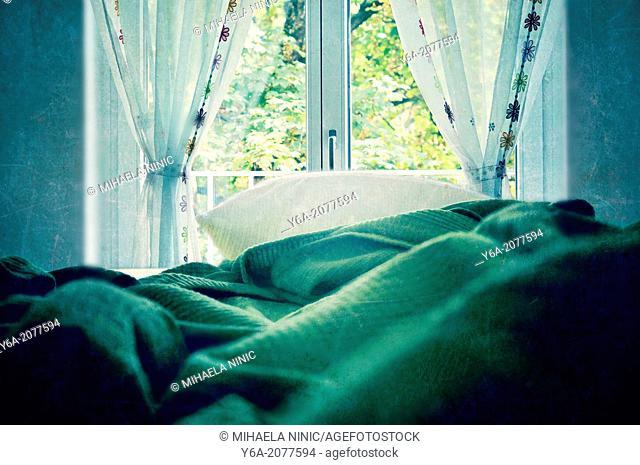 Empty bed by window