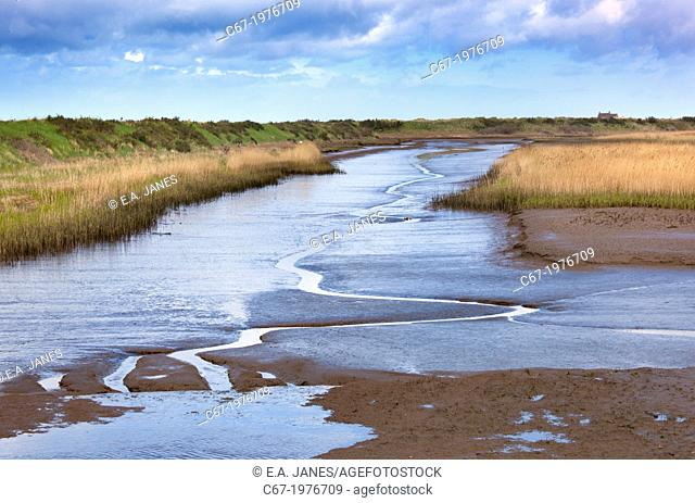 The Rspb Nature reserve at Titchwell Marsh Norfolk