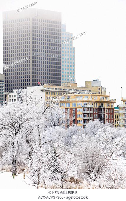City buildings and trees covered in frost and snow on a cold winter day. Winnipeg, Manitoba, Canada