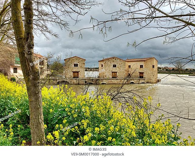 Aceñas de Olivares watermills on Duero river, Zamora, Castilla-Leon, Spain