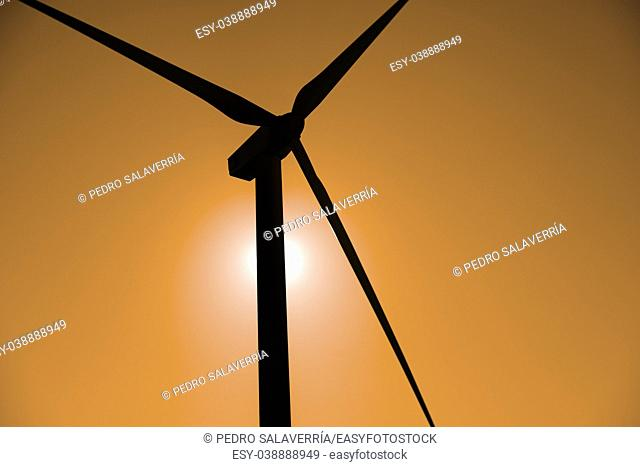 Windmill for renewable electric energy production, Pozuelo de Aragon, Zaragoza, Aragon, Spain