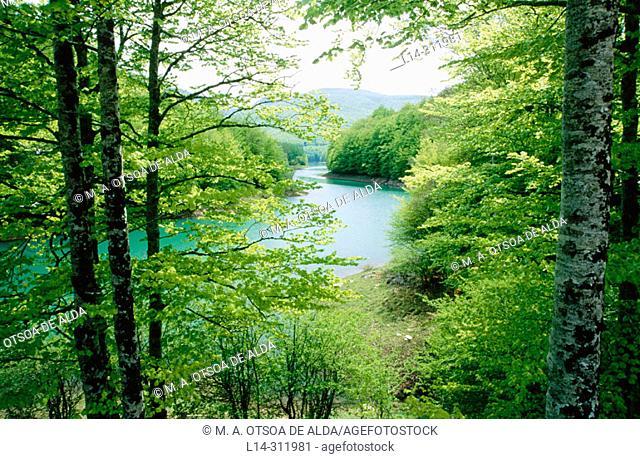 Irabia reservoir. Irati forest. Navarre. Spain