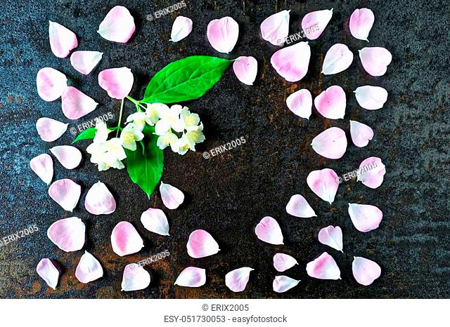 Frame with petals of pink tea rose and jasmine flowers on stone with metallized effect background. Flat lay