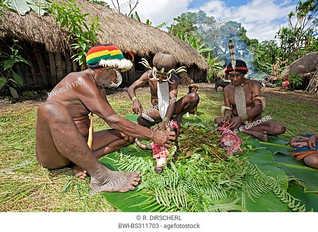 Dani men carving a cooked pig for the rare pigs feast, the pinnacle of the social and religious life, Indonesia, Western New Guinea, Baliem Valley