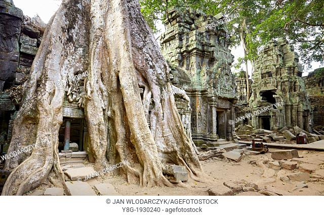 Roots of a giant tree overgrowing ruins of the Ta Prohm Temple, Angkor Temple Complex, Siem Reap Province, Cambodia, Asia, UNESCO