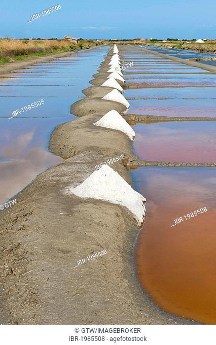 Salt Marsh, Loix, Ile de Re island, Departement Charentes Maritime, France, Europe