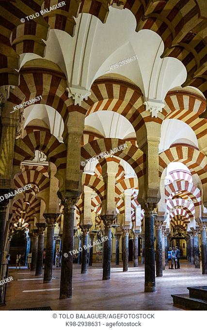 Prayer room, Mosque-Cathedral of Córdoba, Andalucia, Spain