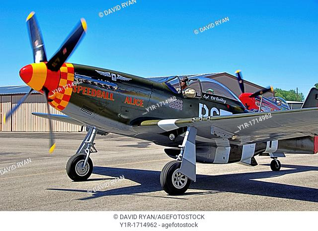 'Speedball Alice', P-51D WW2 Fighter Aircraft taxiing at Nampa Airport