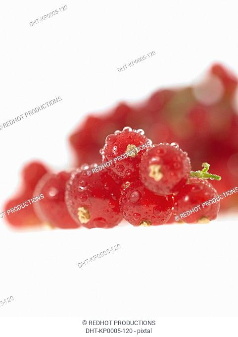 Food, Fruit, Redcurrants
