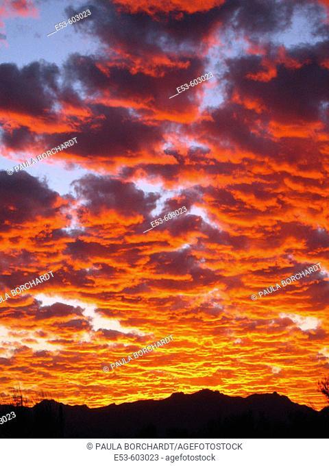 Sunset over the Tucson Mountains, Tucson, Arizona, USA