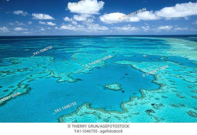 Aerial view of the Heart Reef (Hardy reef) in the Great Barrier Reef, Unesco world heritage. Whitsunday islands, Queensland, Australia