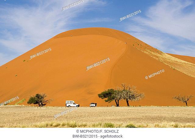 Namib desert, dune 45 near Sesriem, Namibia