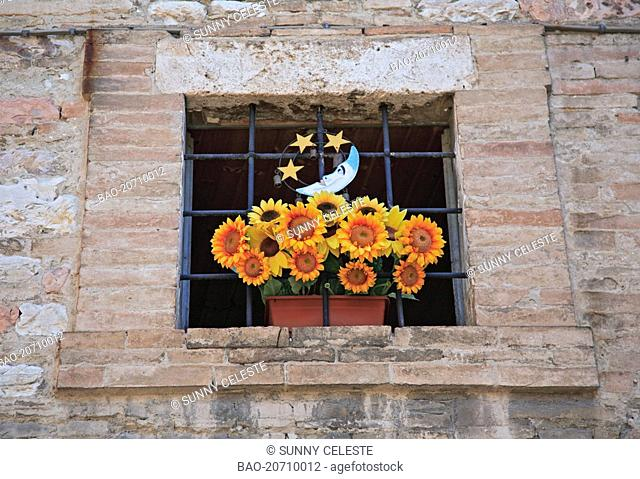 detail in the old city of Assisi, Umbria, Italy, bunch of flowers at a window
