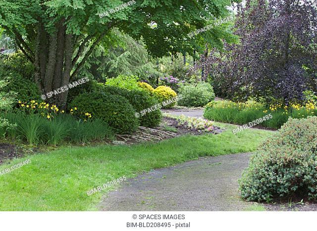 The Oregon Botanic Gardens