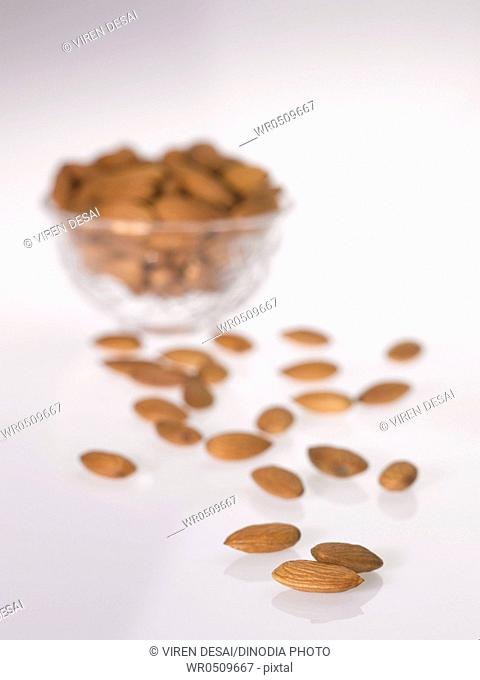 Dryfruit and nut , almonds on white background