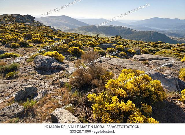 Sierra de Gredos from El Lanchal in Navalmoral de la Sierra. Avila. Castilla Leon. Spain. Europe