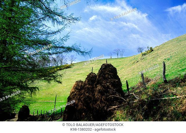 haystack hill near Ursain, long distance footpath GR 11, Guipuzcoa Basque Country Spain