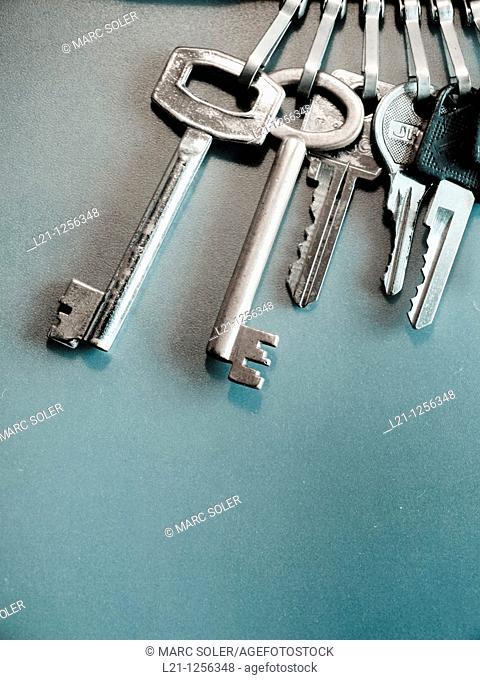 Keys on a keychain, green background