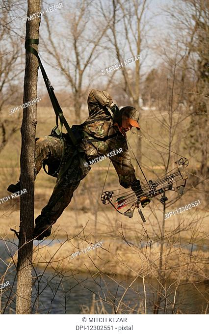 Bowhunter Hangs From Tree Saddle While Deer Hunting