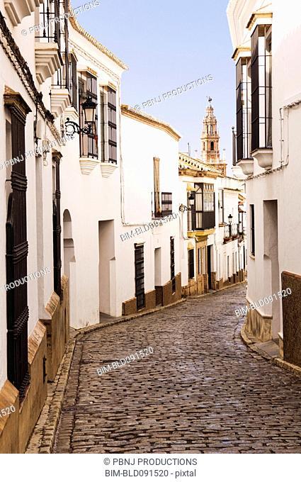 Cobblestone alley of quaint village