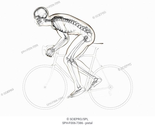 Cyclist, computer artwork