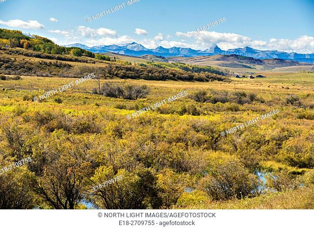 Canada, Alberta, Turner Valley. Marshy shallow valley in the foothills of the Rocky Mountains