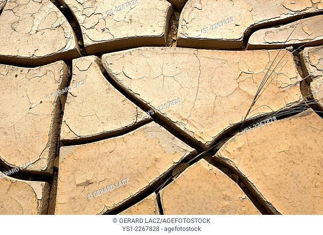 Drought in Desert near Walvis Bay, Namibia