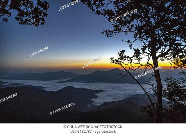 Sunrise scene and sea of fog at Phatang Hill in Chiangrai, Thailand