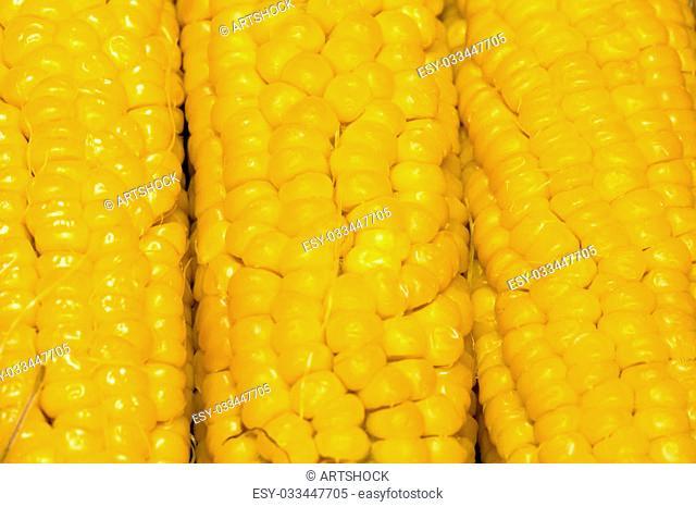 Grains of ripe corn cob, close up background