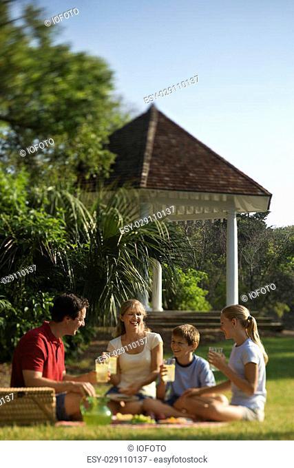 Caucasian family of four having picnic in park