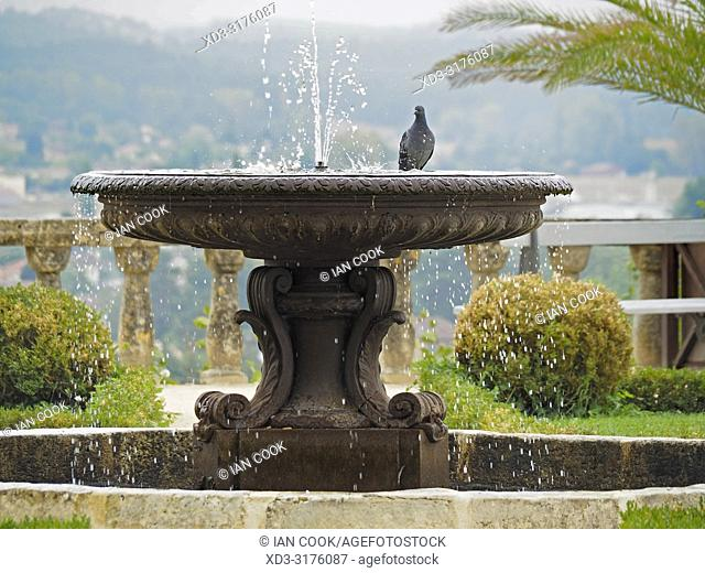 pigeon in a fountain at the Chateau de Fumel, Fumel, Lot-et-Garonne Department, Nouvelle Aquitaine, France