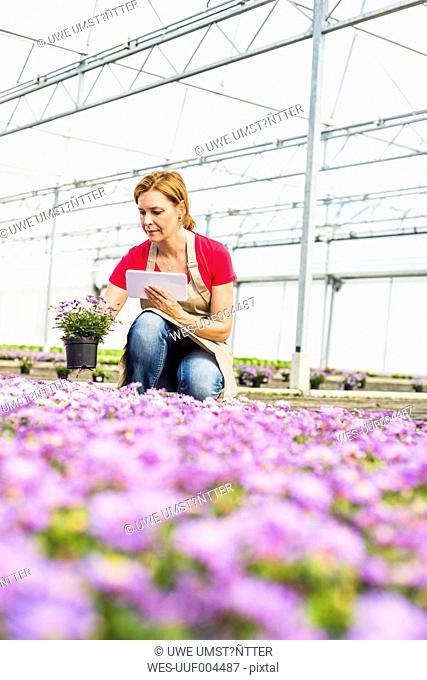Woman in nursery looking at flower holding digital tablet