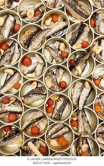 Sardines, Catering in congress, Kursaal Congress Palace, Donostia, San Sebastian, Gipuzkoa, Basque Country, Spain, Europe
