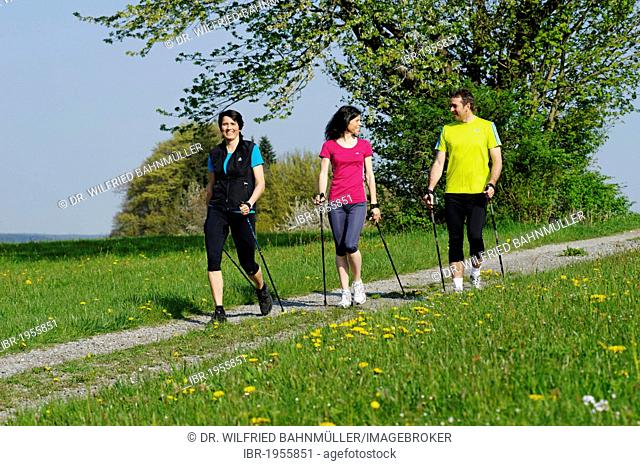 Nordic walking group, with coach, trainer