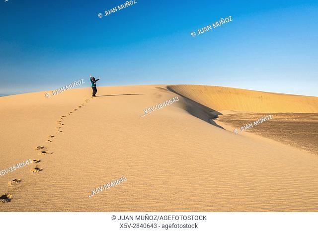 Dunes in Skeleton Coast National Park. Namibia. South Africa
