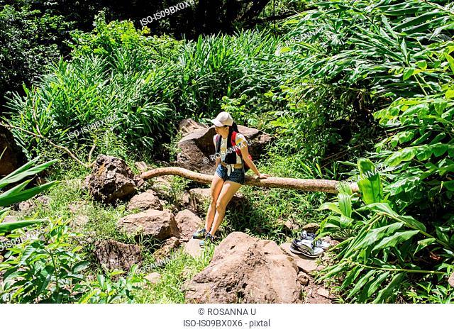 Hiker resting on log, Waipipi Trail, Maui, Hawaii