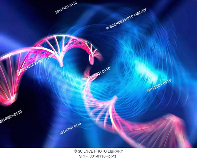 DNA molecules, computer artwork