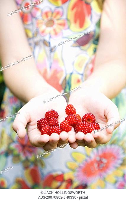Mid section view of a girl's hands holding raspberries