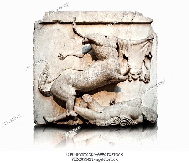 Sculpture of Lapiths and Centaurs battling from the Metope of the Parthenon on the Acropolis of Athens no XXVIII. Also known as the Elgin marbles