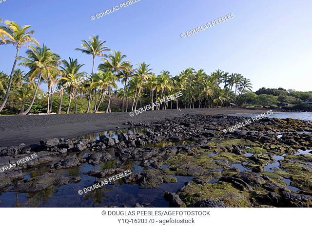 Punaluu Black Sand beach, Island of Hawaii, USA