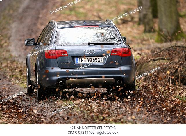 Audi A6 Allroad Quattro 4.2 FSI, model year 2006-, anthracite, driving, diagonal from the back, rear view, Forest way, Foliage, Autumn
