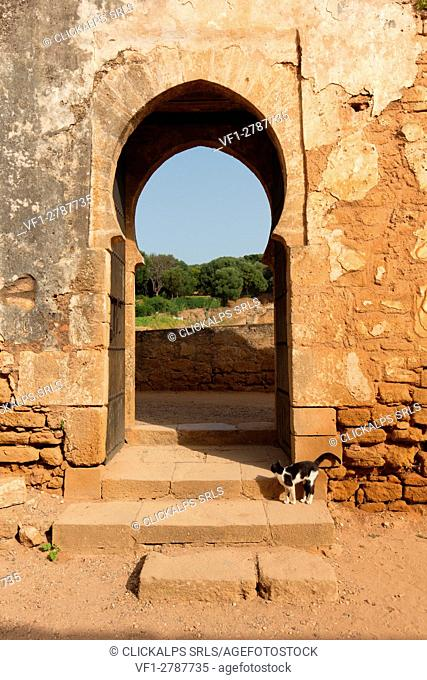 North Africa,Morocco,Capital Rabat. Archaeological site Chellah